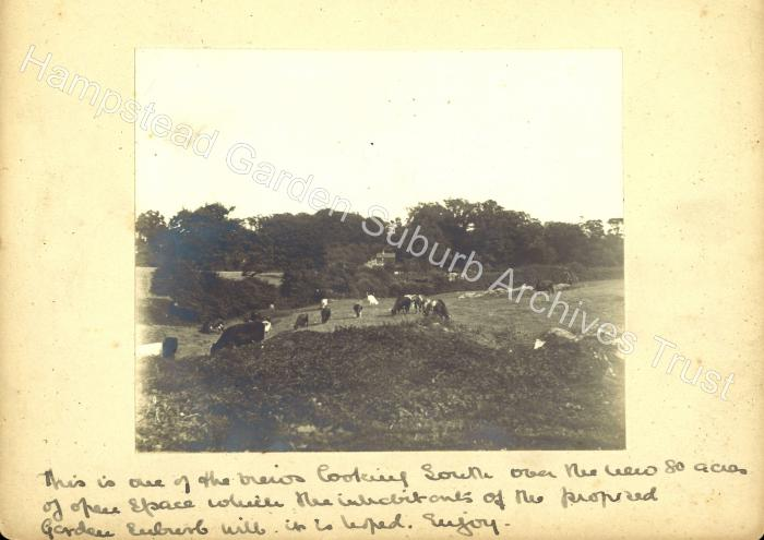 Pre Suburb - Farmland View