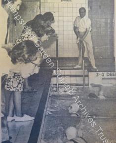 A close finish - newspaper cutting of swimming race in 1970s